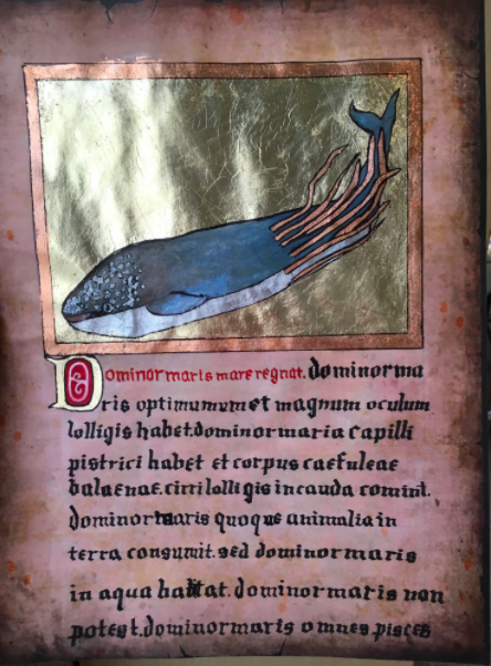 Medieval Bestiary Project